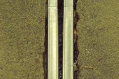 DSCF0157